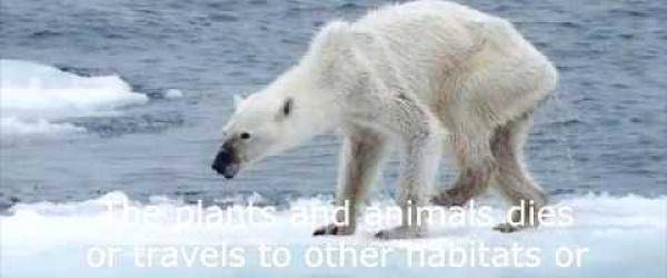 Embedded thumbnail for Què és el canvi climàtic?