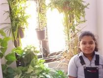 Vertical garden by class 3