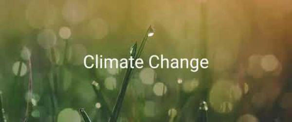 Embedded thumbnail for What is climate change? (In short)