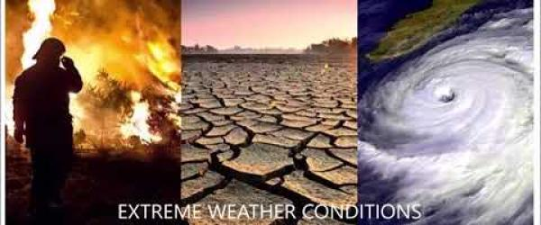 Embedded thumbnail for EFFECTS OF CLIMATE CHANGE