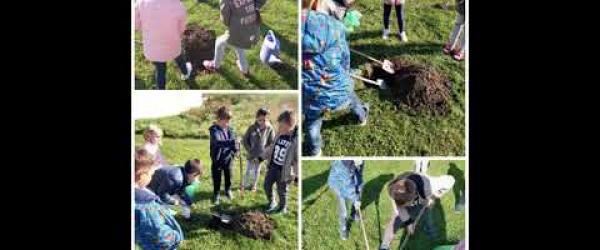 Embedded thumbnail for Planting 2 trees_ Primary school Hnka Juhna Podgorac_Branch school Budimci_1st class_ WEEK 4_ Croatia