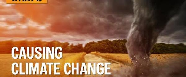 Embedded thumbnail for Environmental Issues due to Climate Change